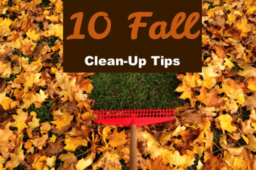 Fall Clean Up Tips Graphic 1 e1539279948631 - HRM Insurance Services